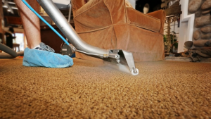 How to Disinfect Carpet- The Right Way To Do It