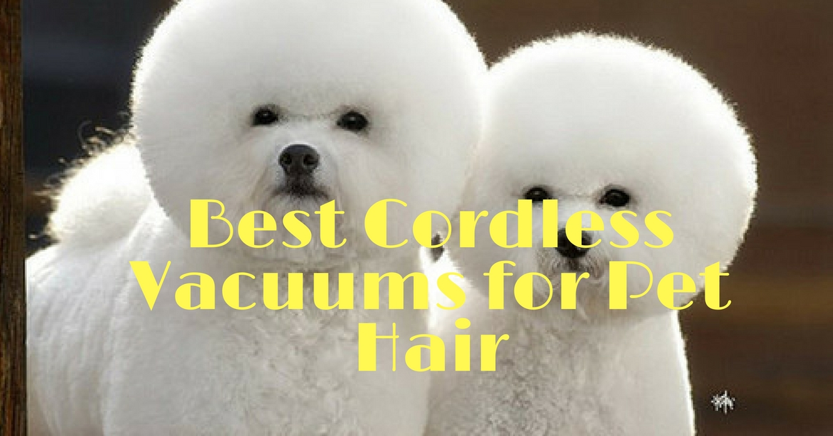 Best Cordless Vacuums for Pet Hair Review