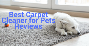 Best Carpet Cleaner for Pets reviews 2018