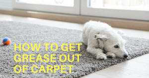 How to Get Grease Out of Carpet: Easy and Effective Solutions to Try